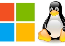 Windows Webhosting and Linux Webhosting